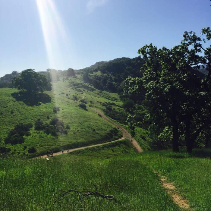 Quicksilver Almaden trails