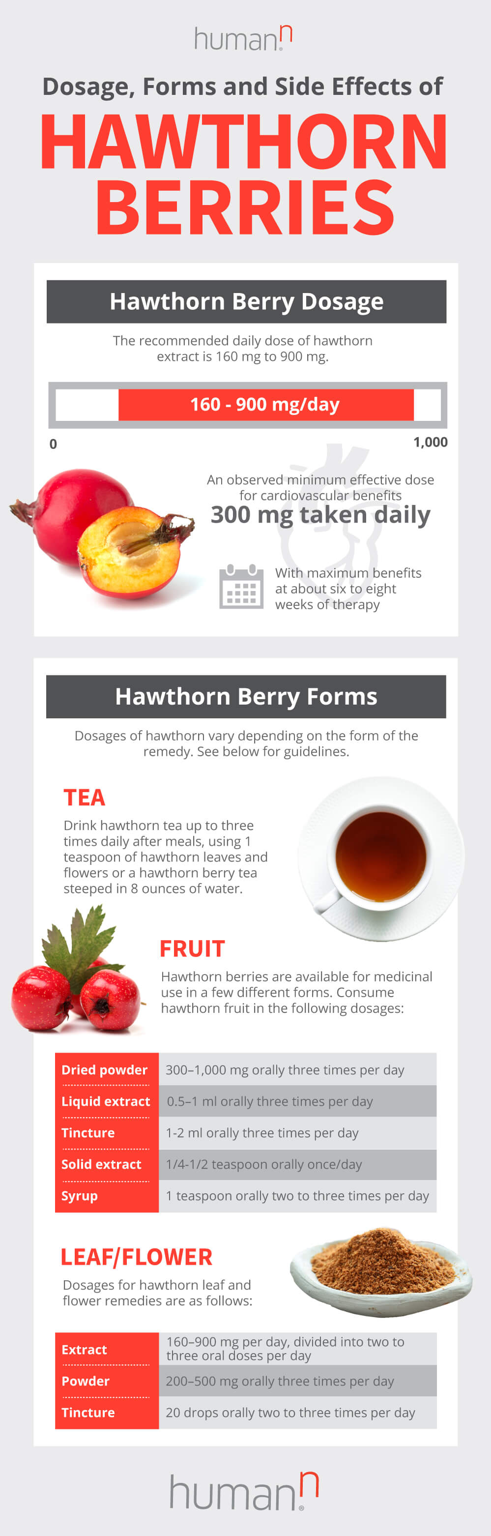 the top 5 hawthorn berry benefits (plus how to use) | humann
