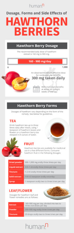 Hawthorn doses and side effects